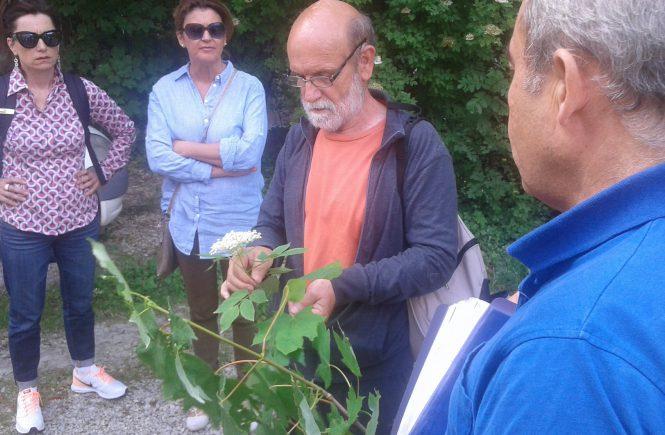 Michel Mayer Citoyen observateur de la nature à Soisy-sur-Seine